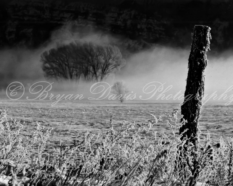 Fog and Fence Post on the Animas (1 of 1)