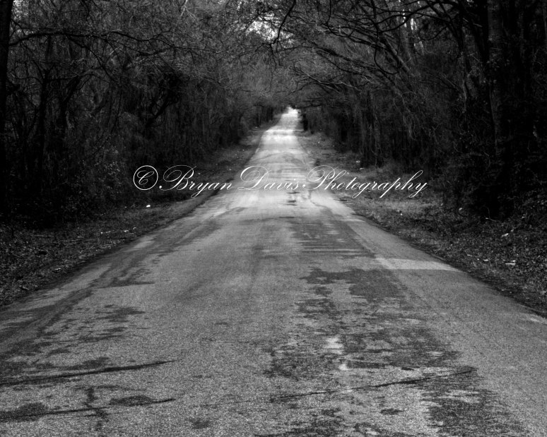 Henderson-country-backroad-