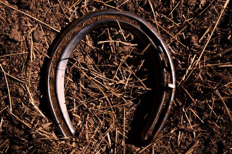 Horseshoe-2web