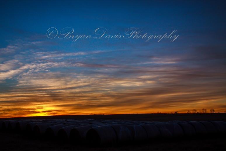 Hay-Bales-Sunrise-web