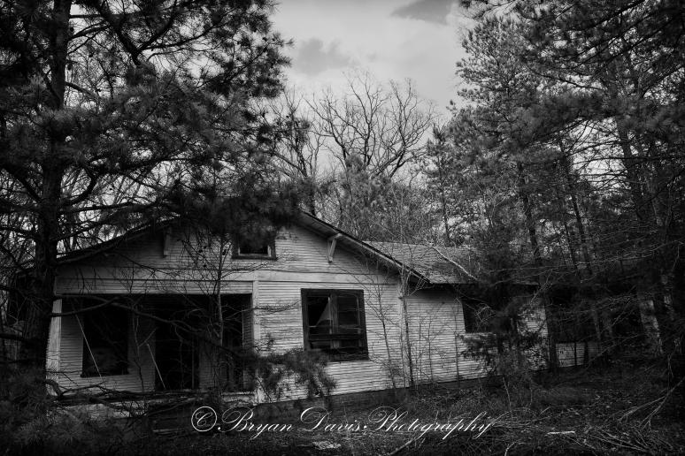 Abandoned-web
