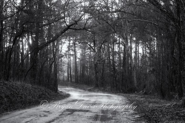 Cherokee-County-Dirt-Road-w