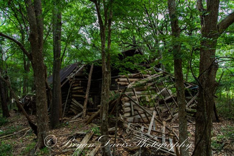 Log-Cabin---Troup3-web