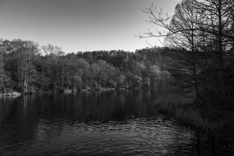 Lake-in-B&W-web